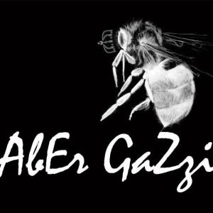 gazzi2